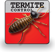 Termite Control.