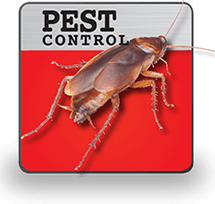 Pest Control.