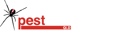 The Pestman Qld - termite specialists